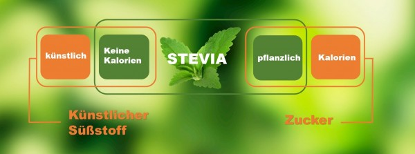 Stevia-Bild-Blog-Schaubild